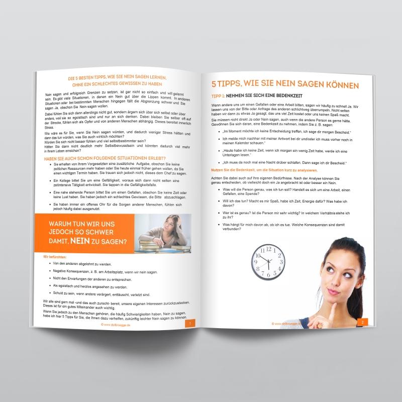 download the international ombudsman yearbook